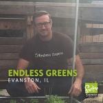 Endless Greens_1080x1080