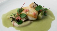 Wild Alaskan halibut in cactus emulsion, clams, charred local baby corn, creamy tepary beans