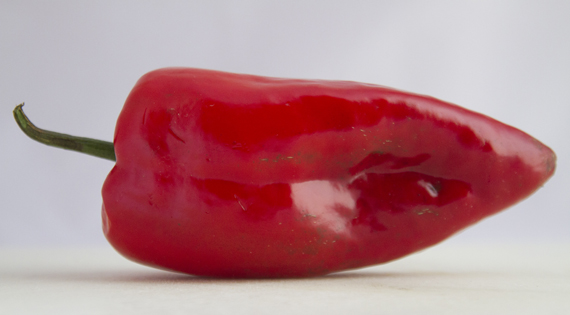 Red Poblano570x315