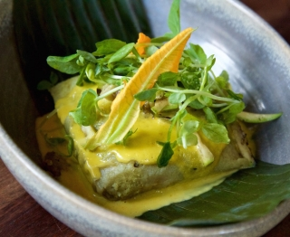 Fresh-ground corn masa tamal steamed in banana leaf, wild greens and homemade ricotta, squash blossom-cheddar sauce, grilled summer squash, pea shoots.